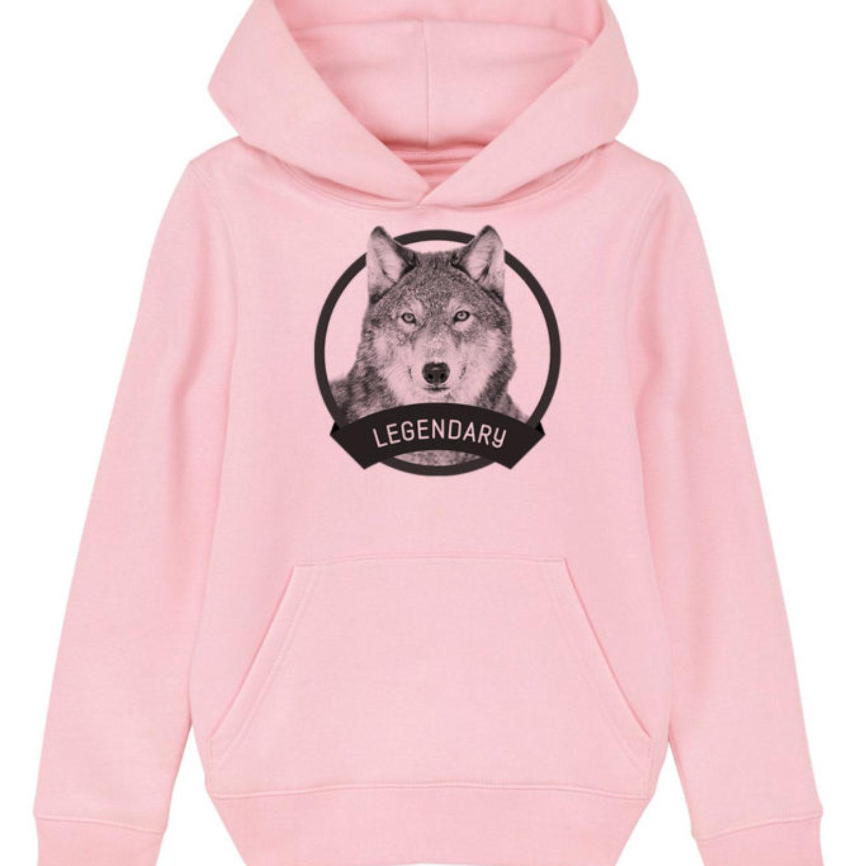 Sweatshirt capuche enfant - Legendary